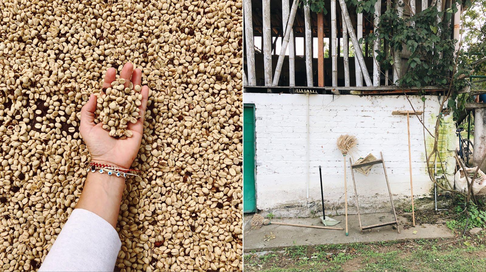 Arte Boheme, Arteboheme, Federica Molini, Visit Colombia, Visit Armenia, Finca Arauca, Colombia Travel, Armenia Colombia, Travel Colombia,  Colombia Coffee Region, Zona Cafetera colombia