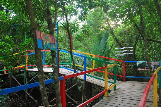 Pemandangan Mangrove Park bakau Besar 7 - Catatan Nizwar ID