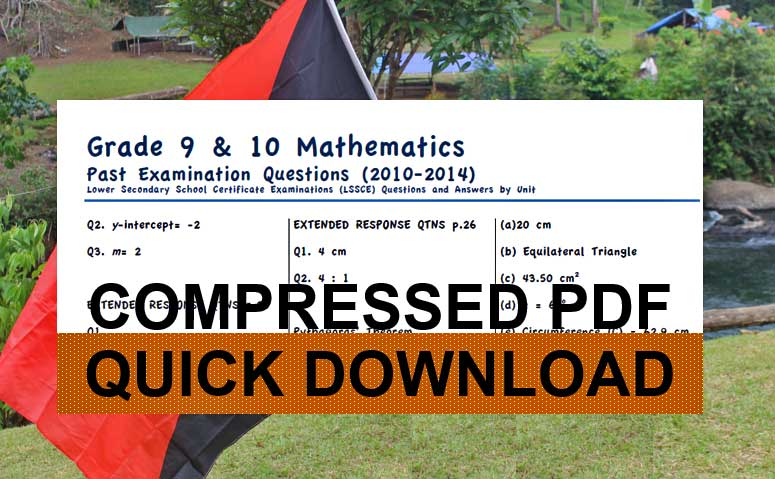 PNG Grade 10 Math Qtns & Answers