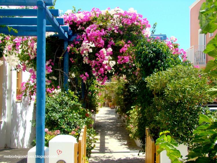 Breathtaking Santorini should be on everyone's bucket list   Ms. Toody Goo Shoes