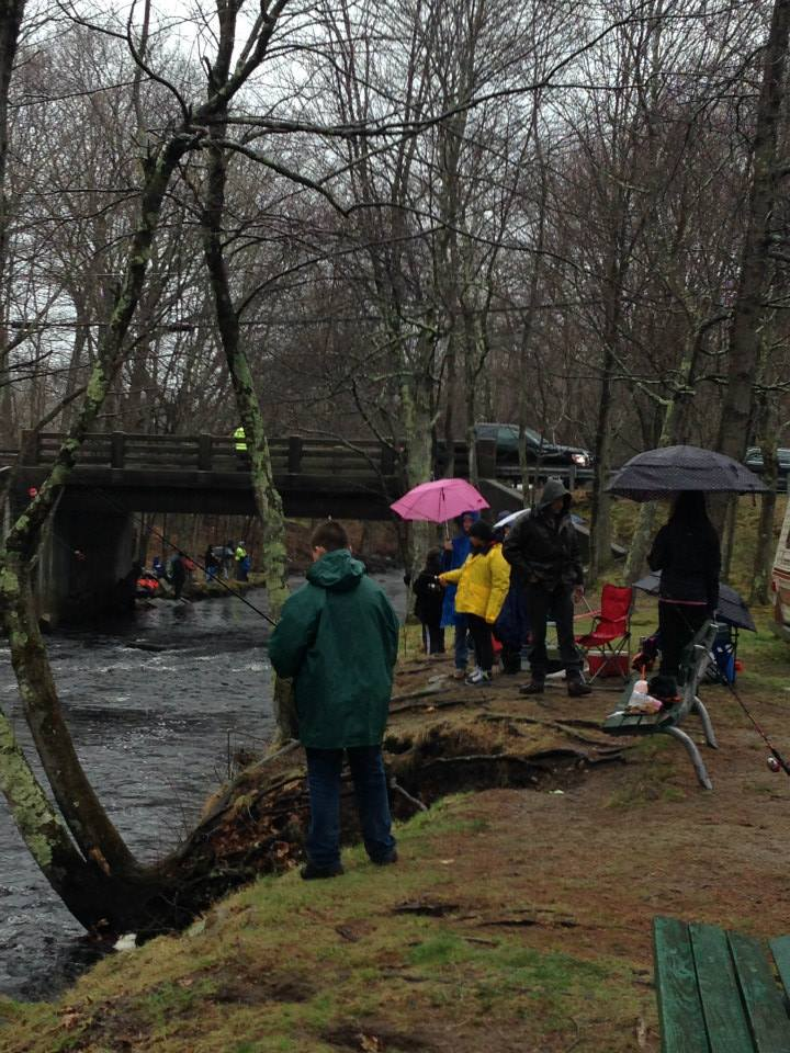 mass trout stocking schedule