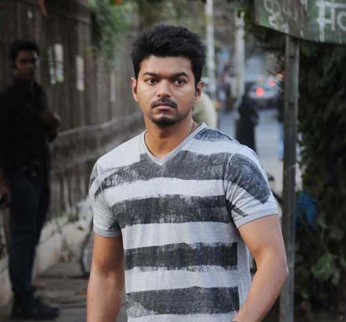 Vijay Fan Club: Thuppakki