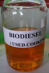 Minyak jelantah Indonesia bahan mentah biodisel