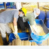 tam huong que - Sự thật tăm tẩm hóa chất (tăm tre hương quế)
