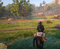 Earn Infinite Money, Red Dead Redemption 2 Online, RDR 2 Online