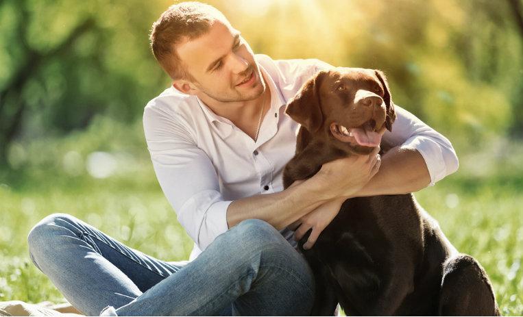 Temperamento perro Labrador