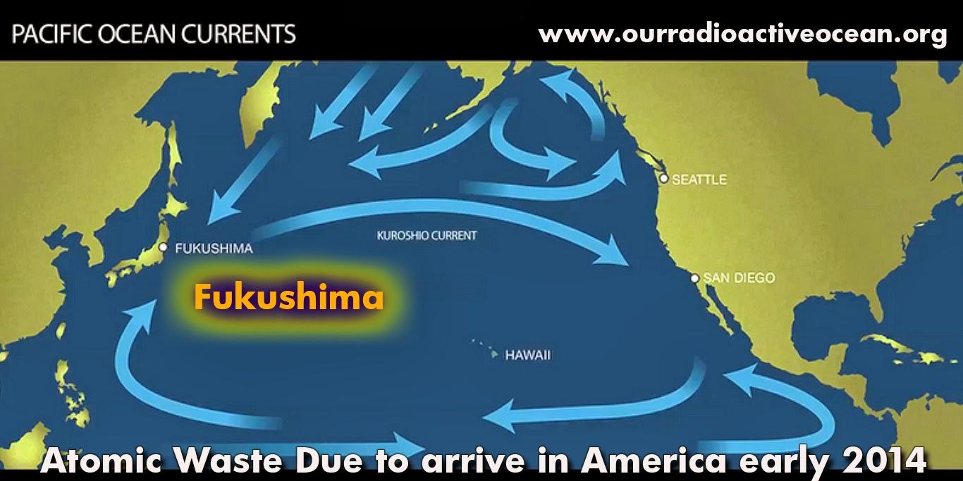 https://3.bp.blogspot.com/-MJUX5EuD0-0/UwrsvW73EDI/AAAAAAAAbww/RYmpDqzPmi8/s1600/fukushima-woods-hole-study-vandergreg.jpg