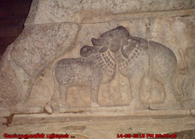 Cow and Elephant Sculpture in Darasuram