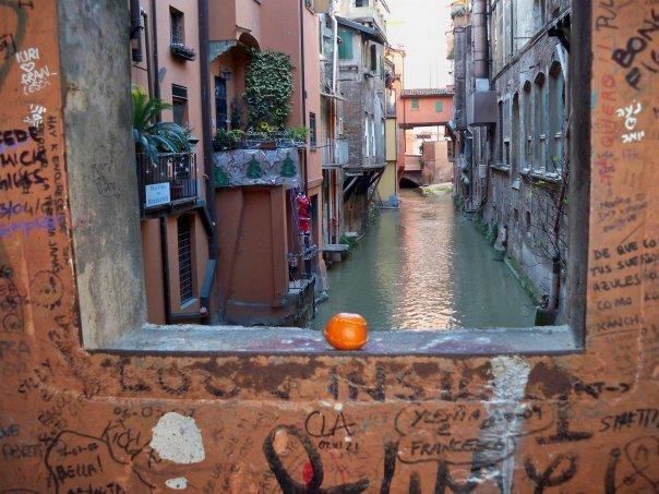 Bologna un punto a capo - La casa continua bologna ...