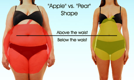 women body shape type apple hourglass pear สาวอวบ ชุดสาวอวบ คนอ้วน