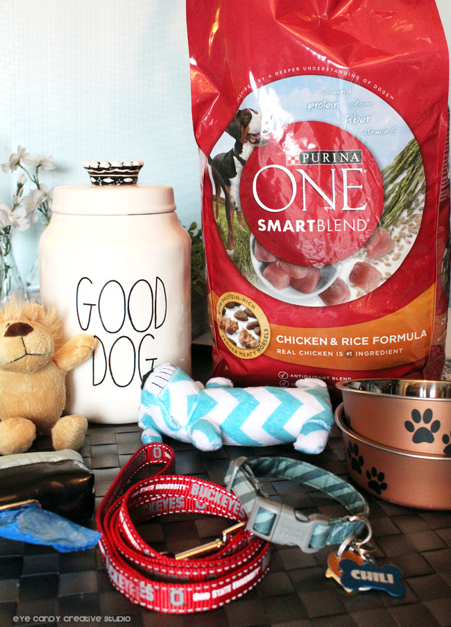 good dog, Purina ONE Smartblend, dog supplies, leash, collar, dog toys