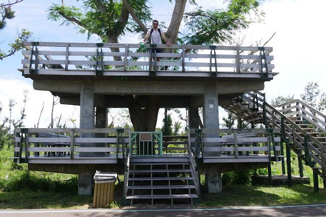 Baumhaus im Forest Park