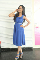 Divya Nandini stunning Beauty in blue Dress at Trendz Exhibition Launch ~  Celebrities Galleries 044.JPG