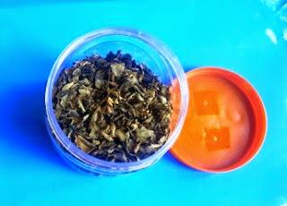 Image result for teh kelor