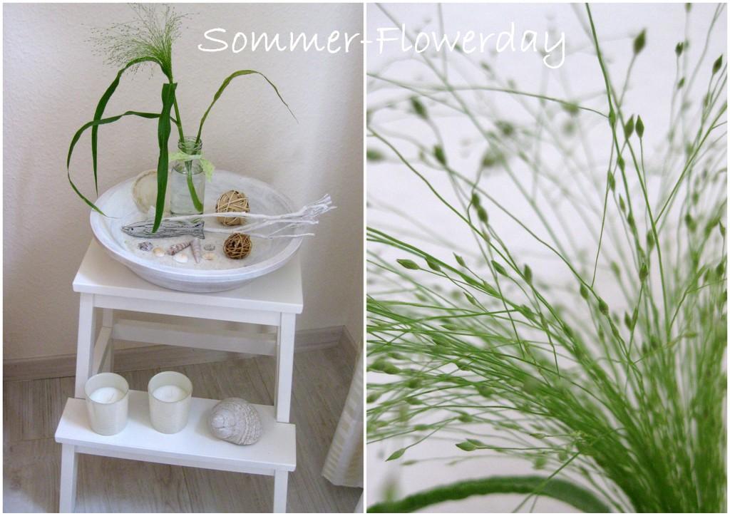niwibo life is so beautiful friday flowerday im juli und lieber besuch. Black Bedroom Furniture Sets. Home Design Ideas