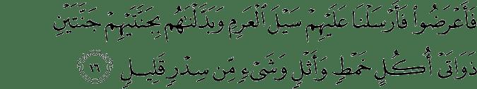 Surat Saba' Ayat 16