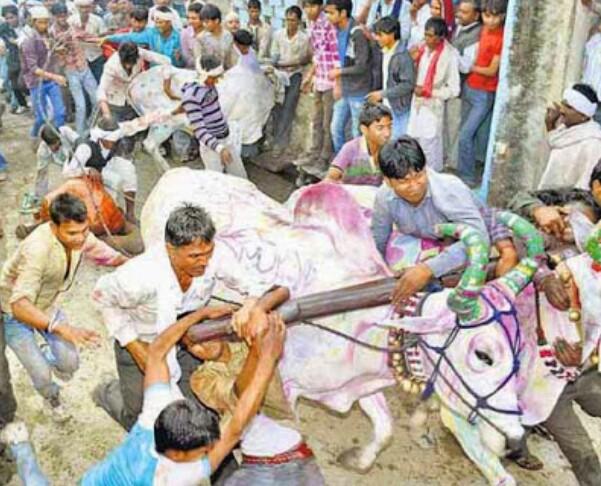 केकड़ी, अजमेर, राजस्थान, दीपावली, दीवाली, घासभैरुं, घास की सवारी, दीवाली परंपरा, केकड़ी समाचार,