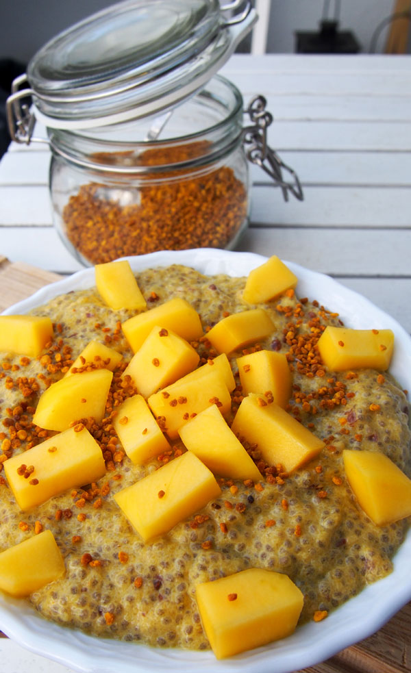 Reseptit: mangochiavanukas