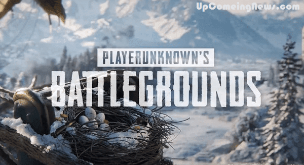 PUBG ban: 11-year-old boy turned to the Bombay High Court demanded ban on the game