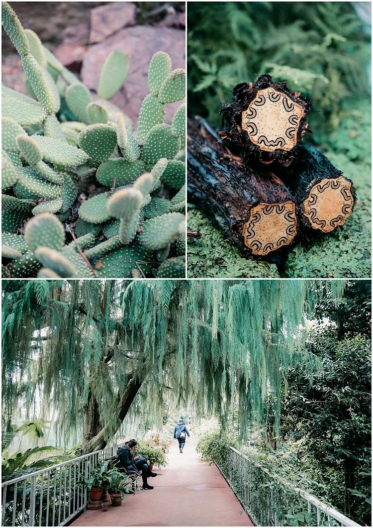 ecosse serre tropicale edimbourg
