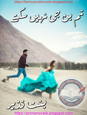 Free download Tum bin jee ni sakty novel by Bint E Nazir Complete pdf