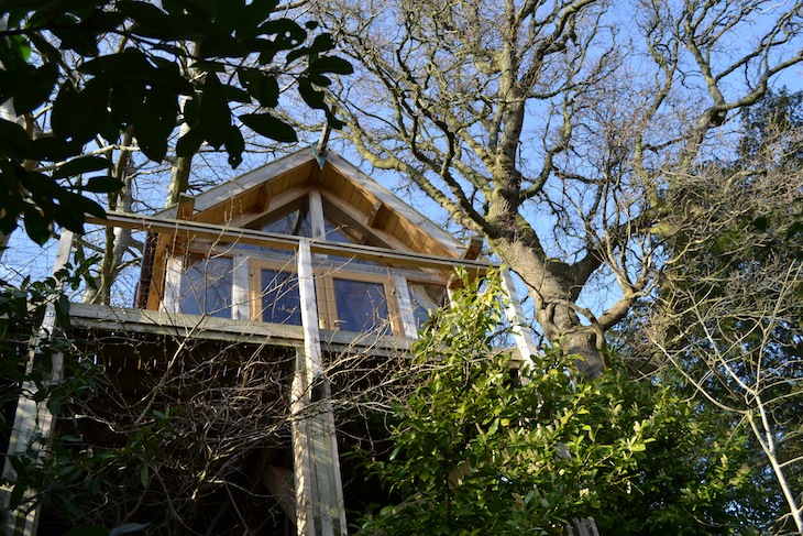 Uplands Treehouse Canopy and Stars Holiday