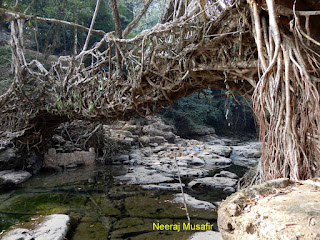 Mawlynnong Meghalaya Complete Information