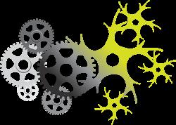De la organización Máquina a la Organización Viviente
