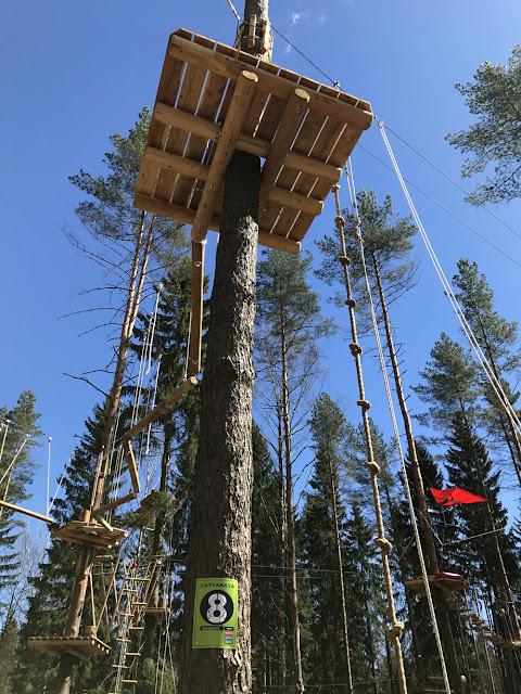 Uusi köysiseikkailupuisto avattiin Helsingin Paloheinään 17