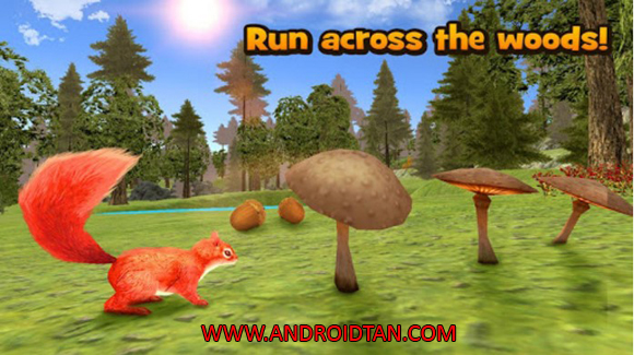 Free Download Forest Squirrel Simulator 3D Mod Apk v1.0 (Unlimited Money) Android Terbaru Latest Version 2017