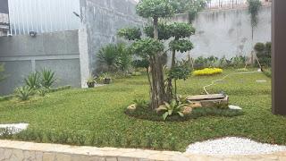 Tukang Taman di Jonggol,Jasa Pembuat Taman di Jonggol,Jasa Renovasi Taman di Jonggol,Jasa Pembuat Taman Minimalis di Jonggol