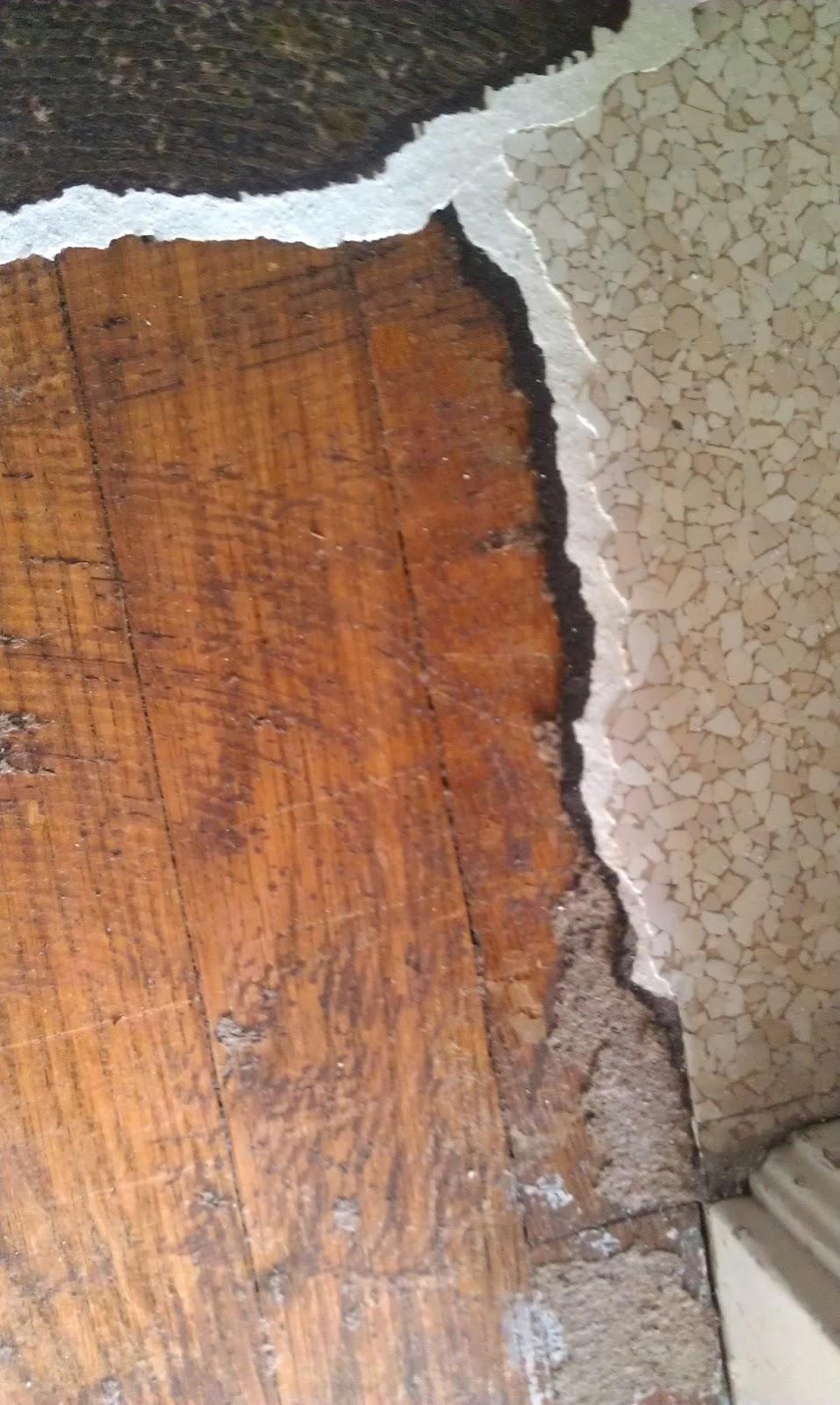 Old Linoleum Asbestos 45