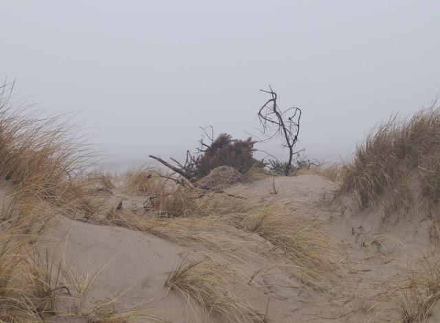 Wunderbarer Nebel am Strand von Houvig. Die Dünenlandschaft von Houvig auf dem Weg zum Meer verschwamm im Nebel.