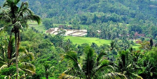pemuda dan pembangunan desa