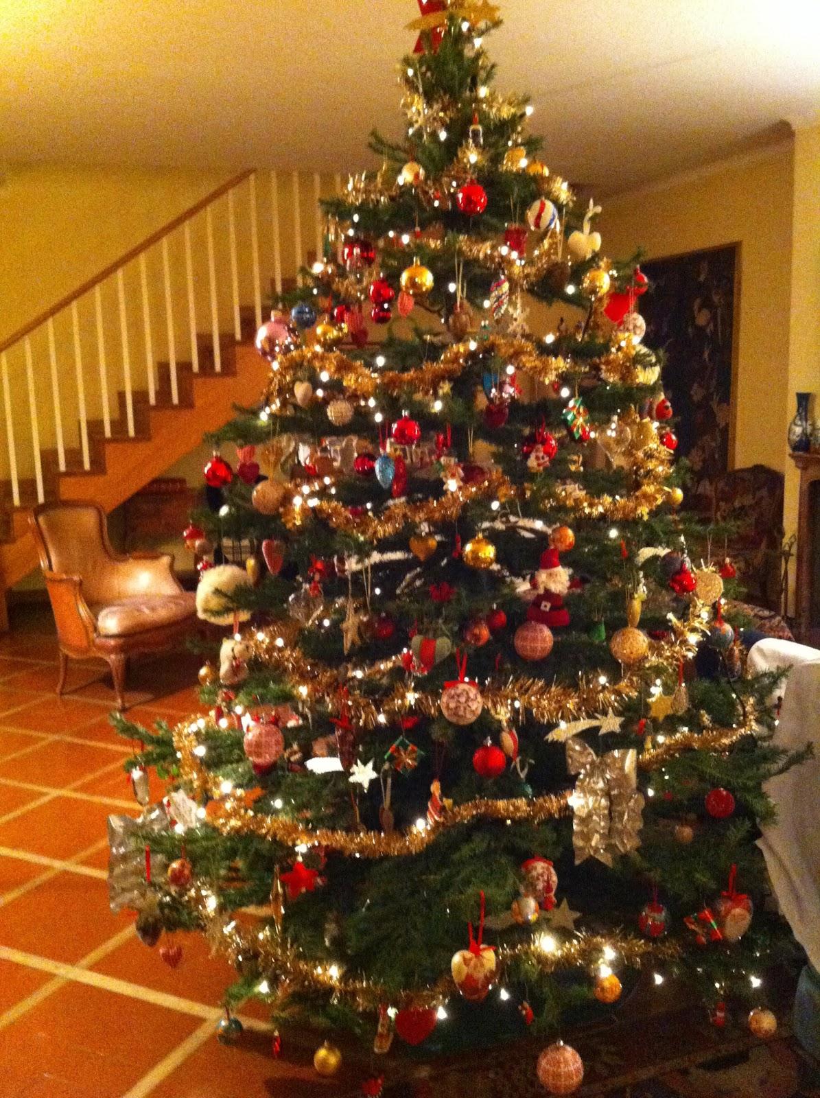 Alberi Di Natale Bellissimi Immagini.Foto Alberi Di Natale Bellissimi