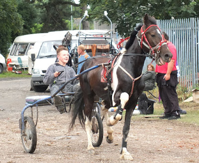 Are you going to Brigg Horse Fair 2016 - to be held on Friday, August 5th? Picture eight  on Nigel Fisher's Brigg Blog