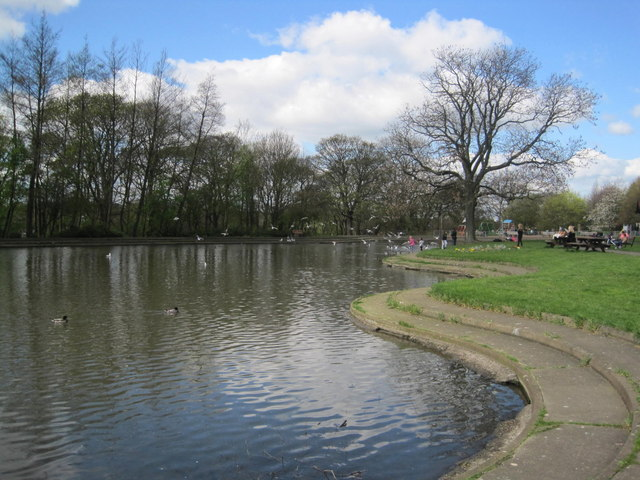 The Best Picnic Spots in Newcastle Upon Tyne | Paddy Freeman's Park
