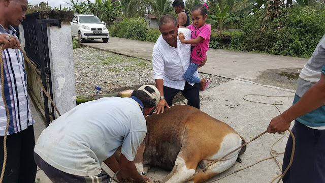 PT Lintas Papua Permai Bagikan Daging Kurban di SP 6