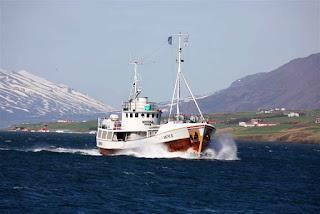 Activités gratuites à Akureyri