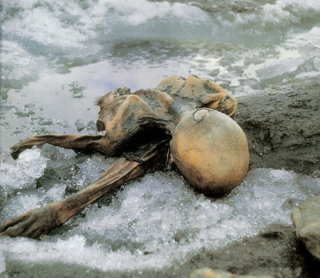 Scientist says Ötzi's last meal was Stone Age cured meat