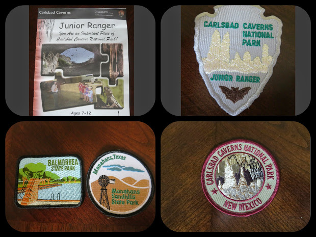 20+ Junior Ranger Badge Pin Display Pictures and Ideas on Meta Networks