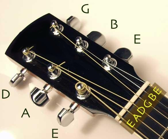 Acoustic Guitar Have 6 Strings Each String Its On Frequencyand These Produce Music According To Their Frequenciesstrings Starts From Down