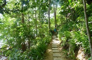 Islas Phi Phi, Koh Phi Phi.