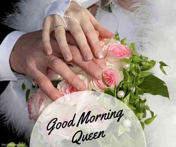 good morning my lovely queen