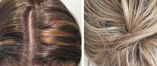 les fanas du bio belles au naturel comment claircir ses cheveux naturellement. Black Bedroom Furniture Sets. Home Design Ideas