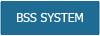 BSS System
