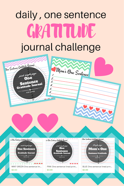 Mom2MomEd Blog: Daily one sentence gratitude journal challenge