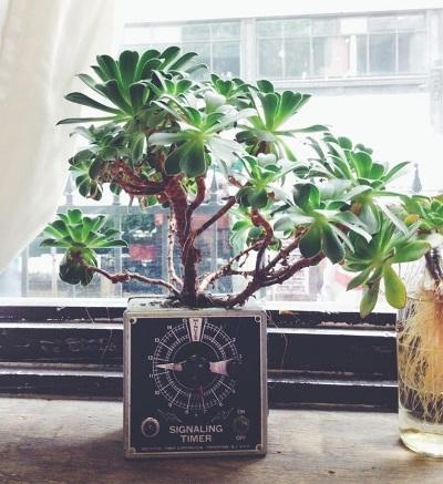 Pot tanaman terbuat dari perabot elektronik