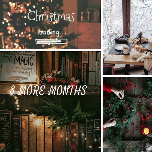 8 Months Until Christmas!