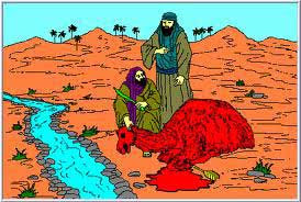 Sejarah Singkat Nabi Shaleh A.S.